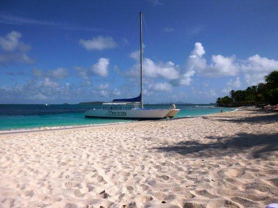 Palm Island Resort & Spa :                   Main Beach