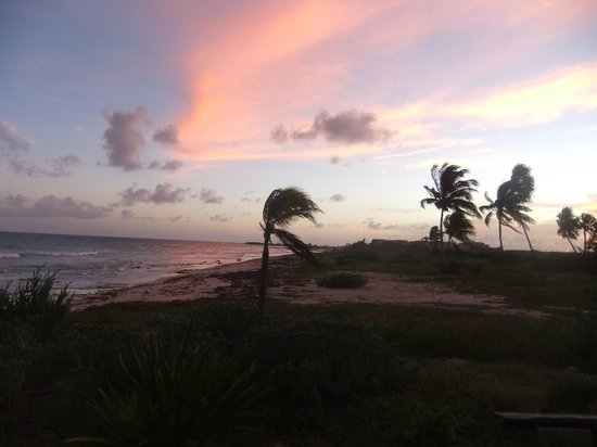 Caribbean Reef Villas :                   Beach next to the Caribbean Reef Villa's