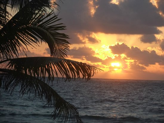 Caribbean Reef Villas :                   Sunrise view from our private patio