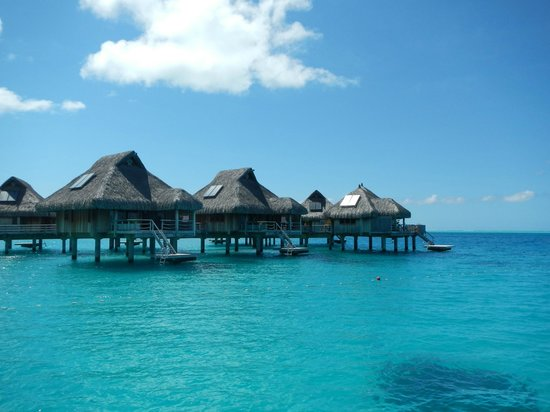 Conrad Bora Bora Nui:                   View of some of the bungalows as we were docking at the resort.