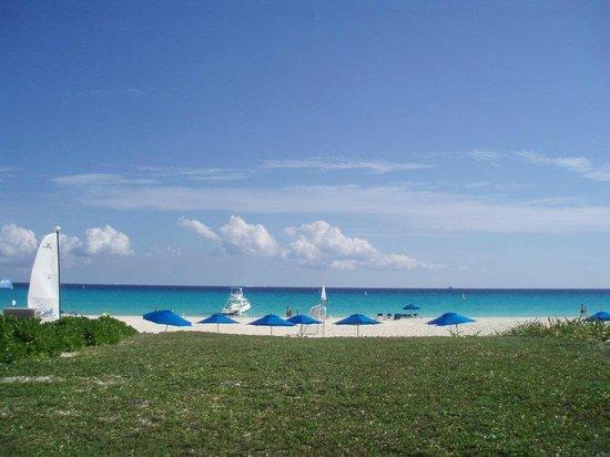 Sandos Playacar Beach Resort:                   Splendid