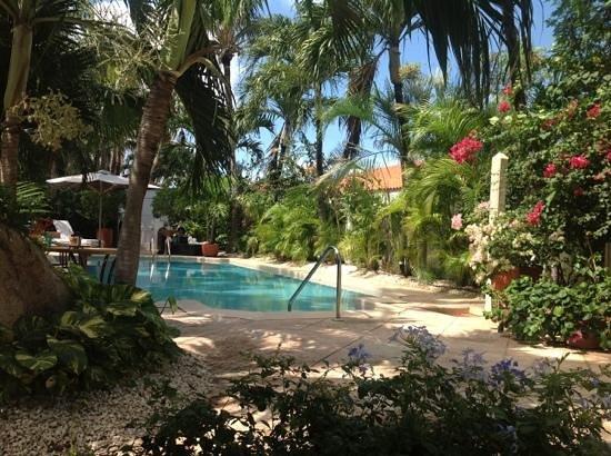 Paradera Park Aruba: garden oasis
