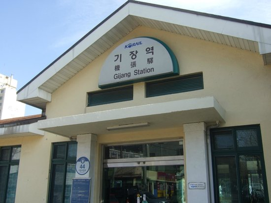 Gijang Market:                   機張駅