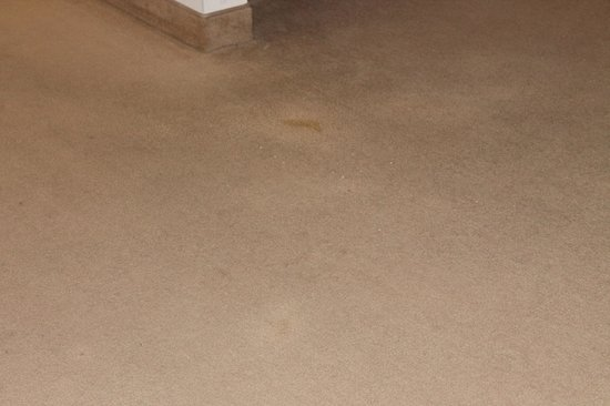 Country Club Hotel & Spa :                   Visible stains on the carpet