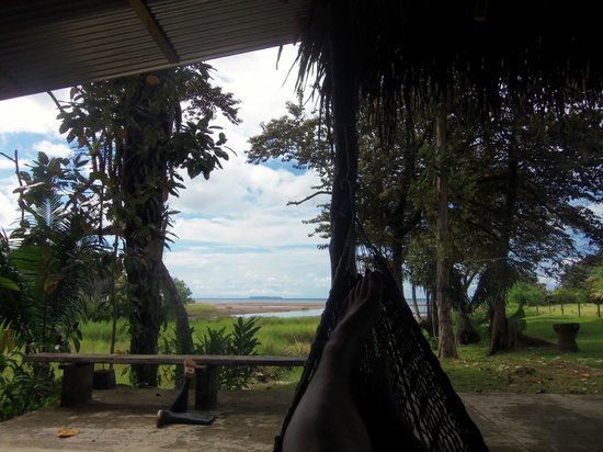 Rio Drake Farm:                   view of the ocean from the kitchen area hammocks