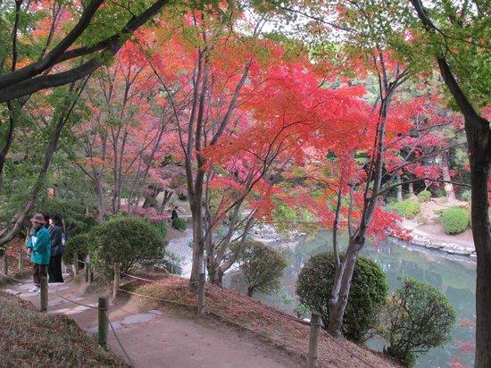 縮景園 - Picture of Shukkei-en Garden, Hiroshima - TripAdvisor