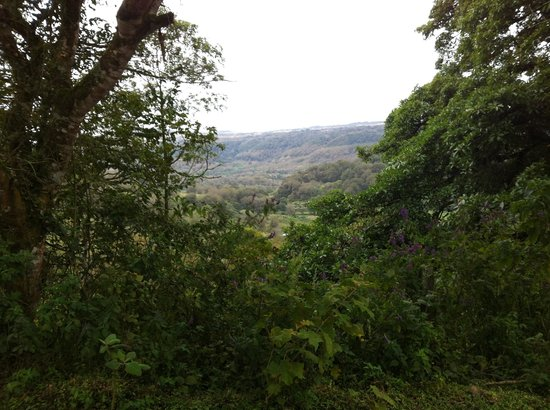 Finca Lindos Ojos:                                     view on our walk