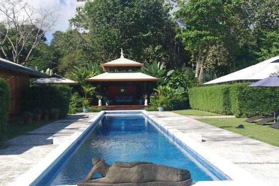 Blue Osa Yoga Retreat and Spa:                                     Pool