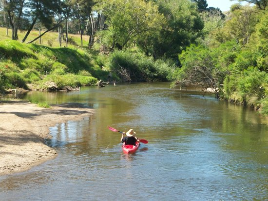 River Retreat Bed & Breakfast: Waitangi River