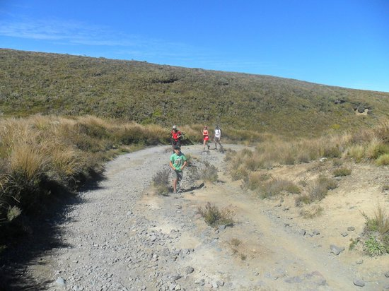 A Plus Backpackers Lodge: the tongariro crossing start