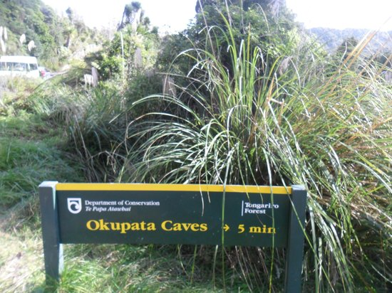 A Plus Backpackers Lodge: there are glow worm caves near by, free, but you do need a car