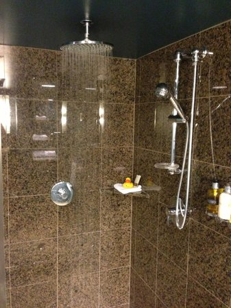 Loews Hotel 1000, Seattle :                   shower in the grand luxe parlor suite