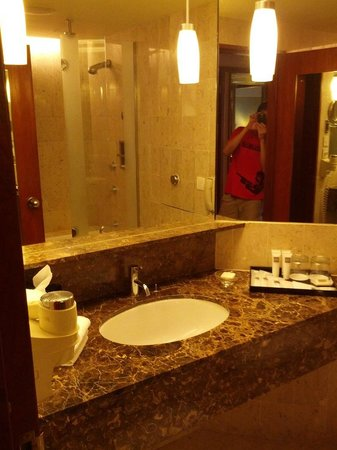 Swissotel The Stamford Singapore: Small bathroom