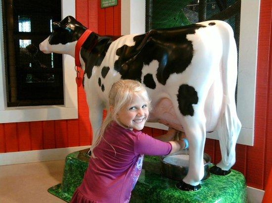 """Джексон, Миссисипи: They can also """"milk"""" a cow."""