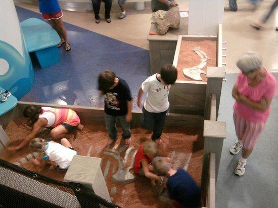 Jackson, Mississippi: Excavation exhibit