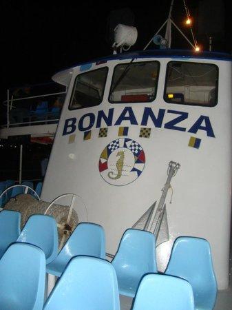 Yate Bonanza