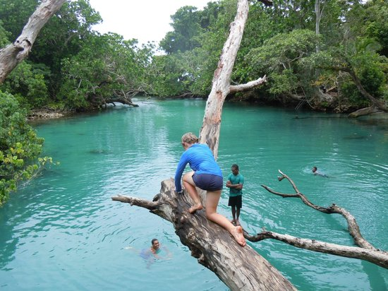 Aquana Beach Resort:                                     Blue Lagoon and tree jump trip
