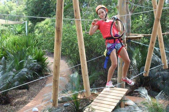 Urban Jungle Adventure Park :                   hard work