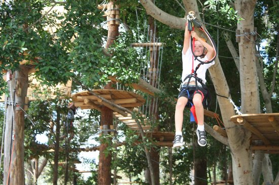 Urban Jungle Adventure Park :                   flying fox