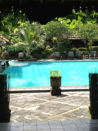Dusun Jogja Village Inn:                   view from the restaurant