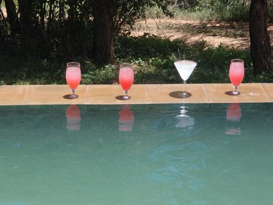 Nkwazi Lake Lodge:                   Drinks at the pool