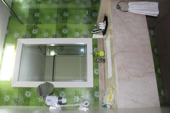 Citrus Goa:                   Ванная комната