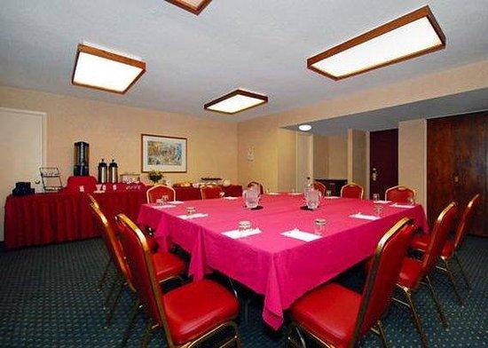 كومفرت إن كونفرانس سنتر: meeting room