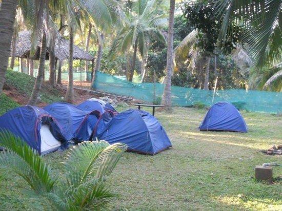 Blue Moon Retreat:                   tents