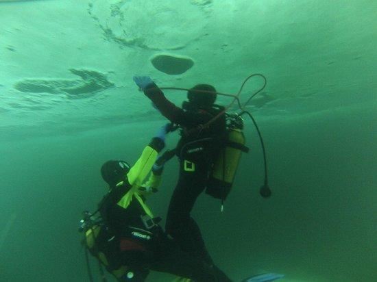 Ecole de plongée sous glace de Tignes :                   Sous la glace