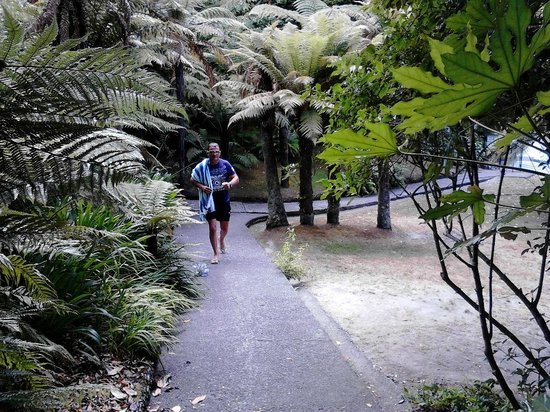 Wairakei Resort Taupo:                                     Pathway down to the second swimming pool