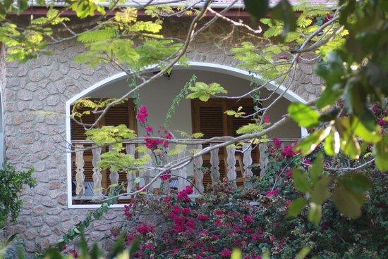 L'Hirondelle:                   la terrazza