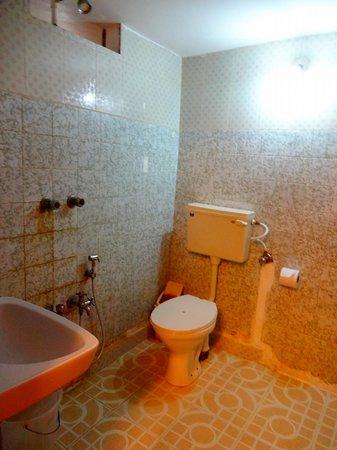 Fort Muziris: bathroom