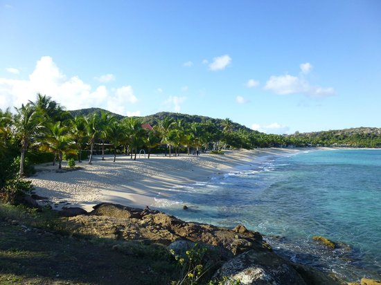 Galley Bay Resort:                   Galley Bay Beach - looks like this all day - NO crowds!