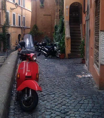 Urban Adventures:                   Trastevere neighbourhood
