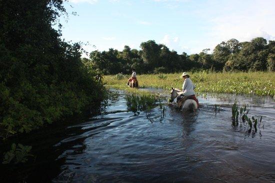 Araras Pantanal Ecolodge:                   Cavalgada I