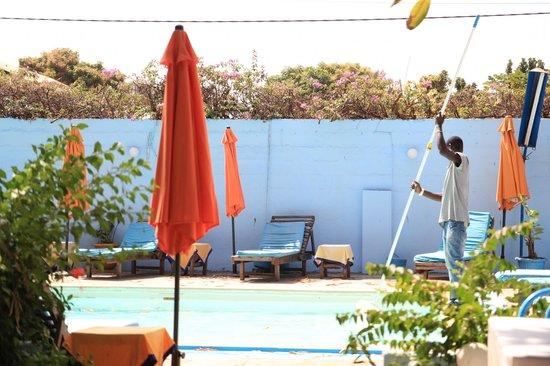 Safari Garden Hotel:                                     Pool and Garden Area