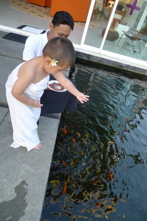 Luna2 Private Hotel: Feeding the fish