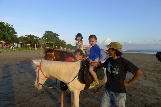 Luna2 Private Hotel: Horse ride on the beach