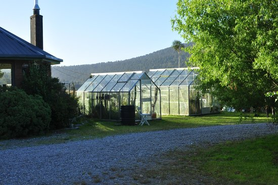 Clearwater Bed and Breakfast :                   Farm side