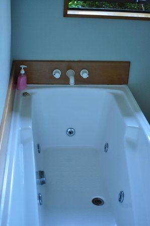 Clearwater Bed and Breakfast:                   Spa Bath