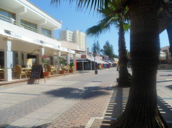 Biniamar: Hotel street view