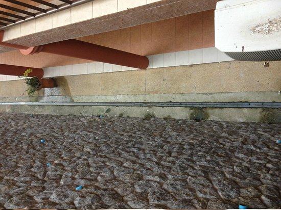 Casa Del M, Patong Beach:                                     very dirty hotel