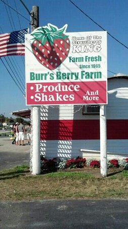 ‪Burr's Berry Farm‬