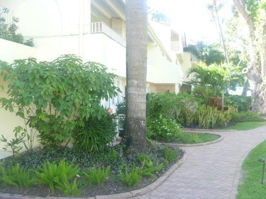 Tamarind by Elegant Hotels:                   Well Manicured Grounds