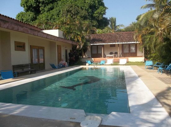 Hotel Casa de Campo Pedasi:                                                       Great pool and Javier kept it clean every