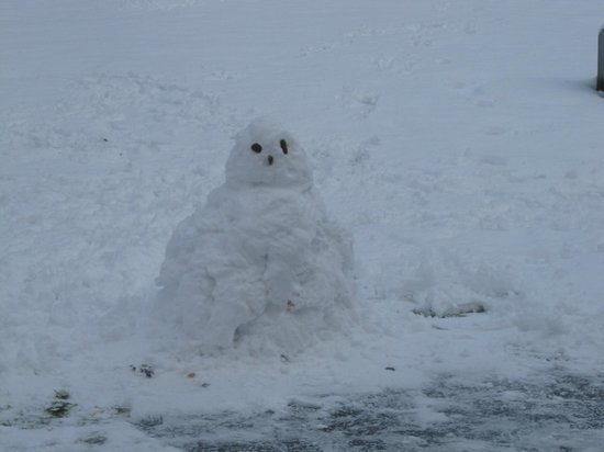 Mains of Taymouth Cottages:                                     Mr Snowman