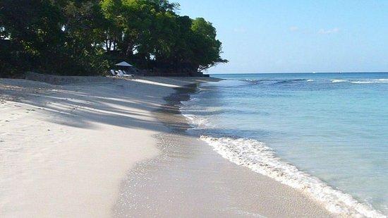 Tamarind by Elegant Hotels:                   Part of Walk between Paynes and Sandy Lane Bays