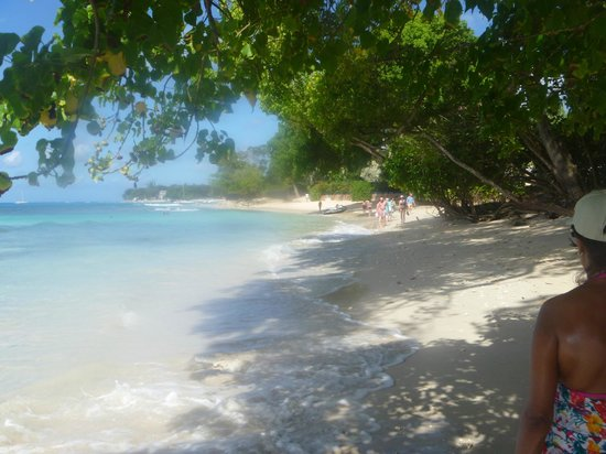Tamarind by Elegant Hotels:                   On the way from Paynes Bay to Sandy Lane Bay