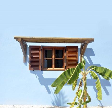 Kunuku Aqua Resort: Window banana tree
