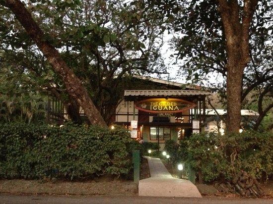Gilded Iguana Hotel:                   Gilded Iguana